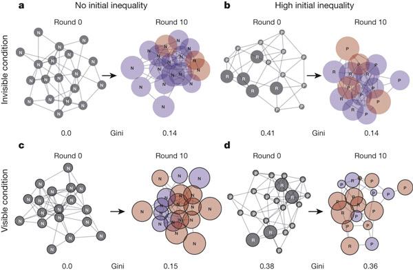 Рис. 1. Примеры изменения социально-экономической структуры в группах испытуемых, игравших в экономическую игру в условиях изначального равенства (No initial inequality: a, c) и изначального неравенства (High initial inequality: b, d), при отсутствии у игроков информации о богатстве соседа (Invisible condition: a, b) и при наличии такой информации (Visible condition: c, d). В каждом случае показана исходная структура (Round 0) и то, к чему игроки пришли к десятому раунду игры (Round 10). Каждый кружок соответствует одному игроку. Размер кружка отражает количество очков («богатство» игрока). Буквами R и P обозначены изначально богатые и бедные игроки, N — игроки, имевшие исходно такое же количество очков, как у остальных членов группы. Цвет круга отражает поведение игрока в последнем раунде: красные — «эгоисты», синие — «кооператоры». Рисунок из обсуждаемой статьи в Nature